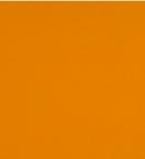 Nautica Orange 3115