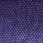 serie-c-freedom-purpura